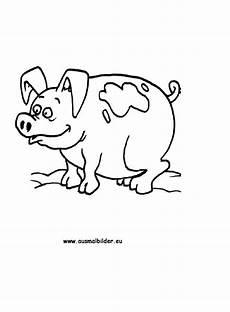 Ausmalbilder Schweine Bauernhof Ausmalbilder Schwein Schweine Malvorlagen