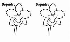 orquidea nacional para colorear orquidea para colorear