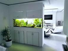 aquarium als raumtrenner raumteiler aquarium in 2019 wall aquarium home aquarium