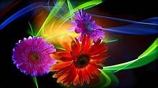 3d Hd Wallpapers Flowers