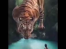 Gambar Macan Prabu Siliwangi Bisa Hidup