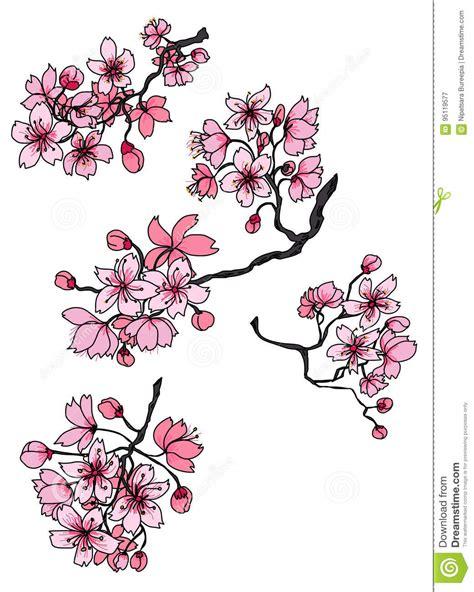 Sakura Mano