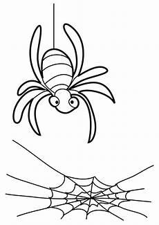 Ausmalbilder Malvorlagen Spinnen Malvorlagen Zum Drucken Ausmalbild Spinne Kostenlos 1 In