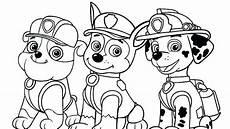 malvorlagen rocky gemischt rasse hund paw patrol