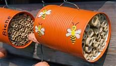 Der Museumsblog Flotte Wildbienen