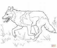 realistic wolf drawing tutorial at getdrawings free