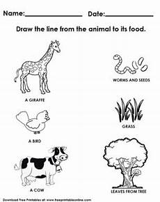 worksheets with animals and their food 14086 17 best images about kindergarden worksheets on kindergarten alphabetical order and