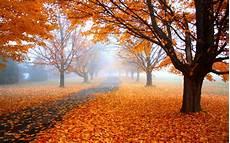 Nature High Resolution Fall Desktop Backgrounds