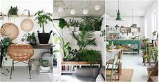 Living Room Home Decor Ideas With Plants by Indoor Plant Decor Ideas To Freshen Up Your Home