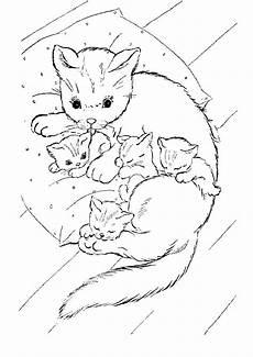 20 besten ideen ausmalbilder katzenbabys beste