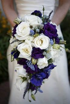 absolutely stunning cascade bouquet with white roses deep purple lisianthus cobalt blue