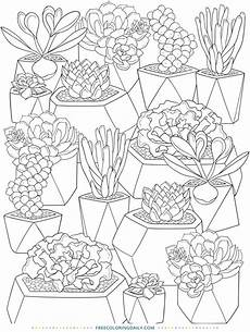Cactus Plant Coloring Pages Free Cactus Coloring Free Coloring Daily