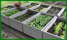 fare l orto in giardino orto in giardino ortaggi orto giardino