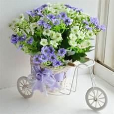 Les Plantes 224 Fleurs D Int 233 Rieur Une Tr 232 S D 233 Coration