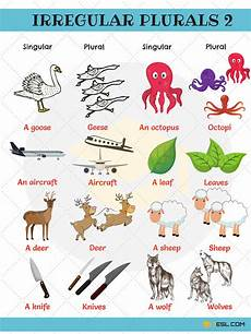 irregular plural nouns useful rules list exles 7 e s l