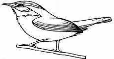 dibujo de los simbolos naturales para colorear simbolos naturales vzla para colorear