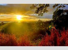 sunshine wallpaper hd   HD Desktop Wallpapers   4k HD