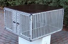 gabbie per cani gabbie per trasporto cani valli s r l gabbie
