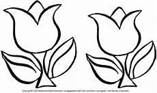 ausmalbild tulpe 4 medienwerkstatt wissen 169 2006 2017