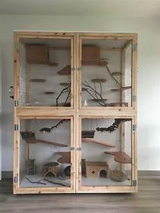 gabbie per criceti fai da te cage pour chinchillas aminals chinchilla