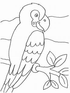 Malvorlage Papagei Einfach Kostenlose Malvorlage V 246 Gel Papagei Auf Einem Ast Zum