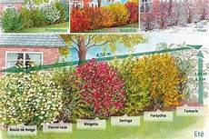 Haie Des 4 Saisons 6 Arbustes En 2 3 Branches Haie 5 M