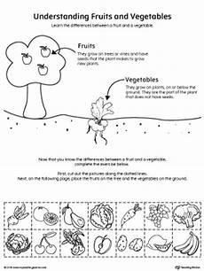 plants and animals worksheets for kindergarten 13507 early childhood plants and animals worksheets myteachingstation