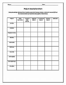 biology taxonomy and classification worksheets tpt