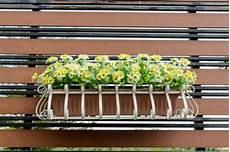 fioriere da davanzale fioriere come scegliere quelle giuste pollicegreen