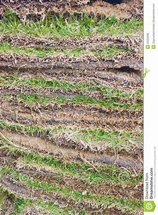green grass sheets as layers image 34234260