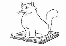 Lustige Ausmalbilder Katzen Katze 54 Ausmalbilder Malvorlagen
