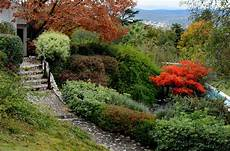 steilen hang bepflanzen growing plants on a hillside best plants for slopes and banks
