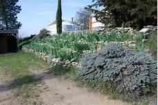 v 233 g 233 talisation de talus plantes adapt 233 es plantation