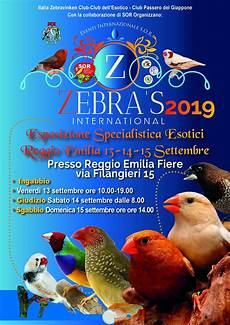 canarini alimentazione pre zebra s international 2019 esposizione ornitologica