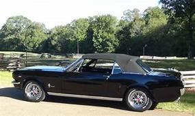 1964 1/2 Mustang Convertible D Code / 4 Speed Triple Black