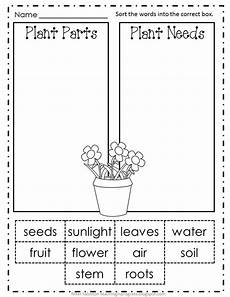 free plant worksheets 2nd grade 13733 appreciation freebies roundup teaching in progress