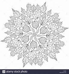 autumn mandala with autumn leaves on white background