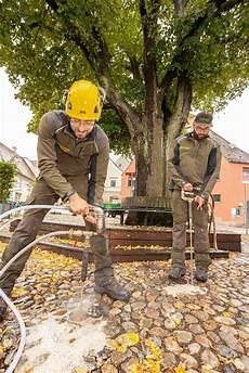 Bodenverbesserung F 252 R B 228 Ume Schr 246 Ppel Baumpflege