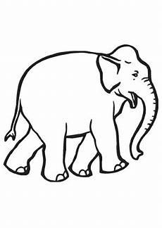 ausmalbild junger elefant zum ausmalen ausmalbilder