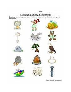 animals living things worksheets 14056 classifying living and nonliving things worksheet primary version living nonliving