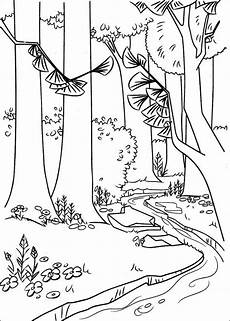 coloring pages animals in the forest 17029 20 best the only water in the forest images on forests beautiful places and
