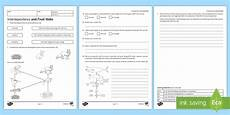 ks3 interdependence and food webs homework activity sheet homework feeding relationship food