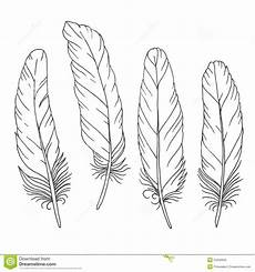 1000 Images About Federn On Feather Drawing