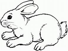 Lapin Coloriage Gallery