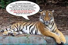 Gambar Melawat Zoo Melaka Percutian Bajet Keterangan