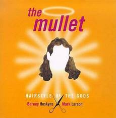 the mullet hairstyle of the gods the mullet hairstyle of the gods barney hoskyns