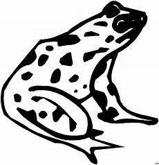 Frosch Malvorlagen Tiere Frosch Mit Flecken Ausmalbild Malvorlage Tiere