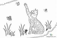 Ausmalbilder Katze Schwer Ausmalbilder Katzen K 228 Tzchen Katzenvorlagen Babyduda