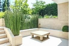 sichtschutz terrasse pflanzen sichtschutz terrasse pflanzkubel desig 1 4 fa r 7