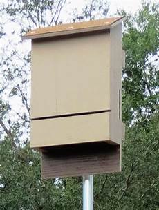 bat house plans florida florida bat conservancy home
